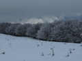 Beauregard - Montagne du Conest 013