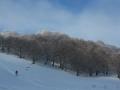 Beauregard - Montagne du Conest 027