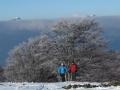 Beauregard - Montagne du Conest 041
