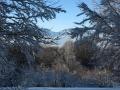 Beauregard - Montagne du Conest 046