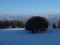 Beauregard - Montagne du Conest 050