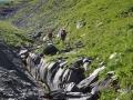 Le Ruisseau de l'Argentière presque à sec