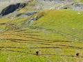 Lacets sous le Col du Vallon