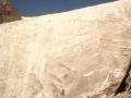 01665 - Frontdu Glacier Blanc - 80