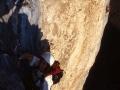 15293 - Chysanthèmes- Grotte - Prelses - Février 2002