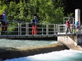 A la prise d'eau du Canal du Beaumont