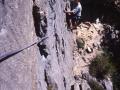 12285 - Les Clématites à Freissinières - Ecrins - Août 1998